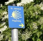 Jakobsweg_Bild
